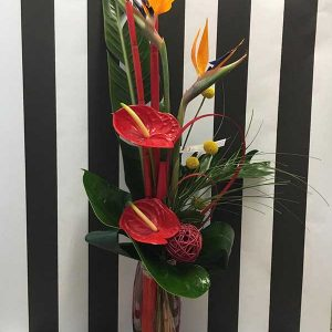 bouquet hauteur cosmopolitan